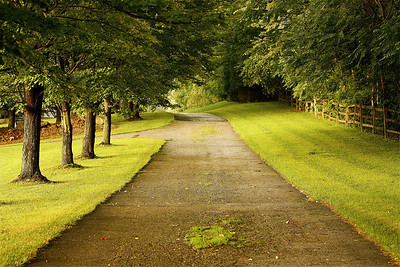 """ Beautiful path""  ""If the path be beautiful, let us not ask where it leads."" ~Anatole France~"